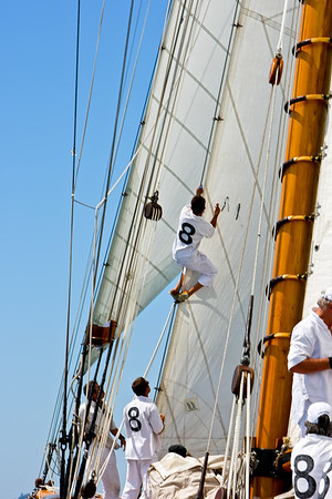 voiles antibes 1189-896797024-O
