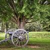 VA Cannon 5