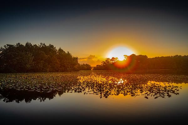 Lake Bradford