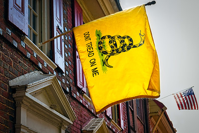 Gadsden Flag 2