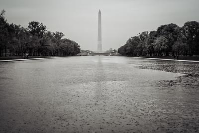 Mall Rain