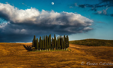 underthetuscanmoon