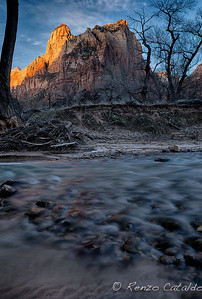 Zion National Park, sunrise along the Virgin River