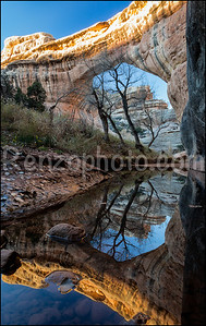 Sipapu Bridge, Natural Bridges National Monument