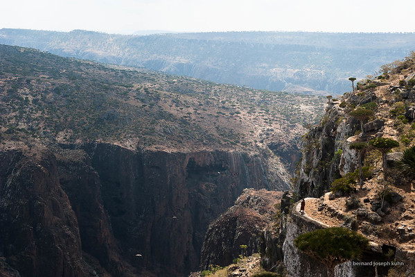 Wadi Daerhu