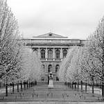 <strong><h3>Jardin du Palais Universitaire</h3></strong>