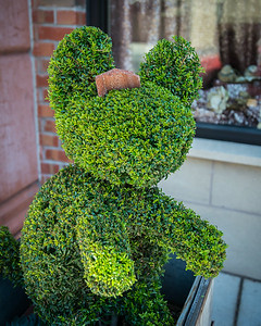 Topiary Damaged