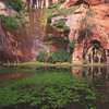 "Utah Red Mountain Spa -- 2007 Dr. Fuhrman Health Getaway -- Hidden Pool . . . Ctrl &  <a href=""http://www.RedMountainSpa.com"">http://www.RedMountainSpa.com</a> . . . Public domain photo from their website"