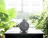 Old alarm bell clock at the window backlit