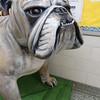 KE Bulldog