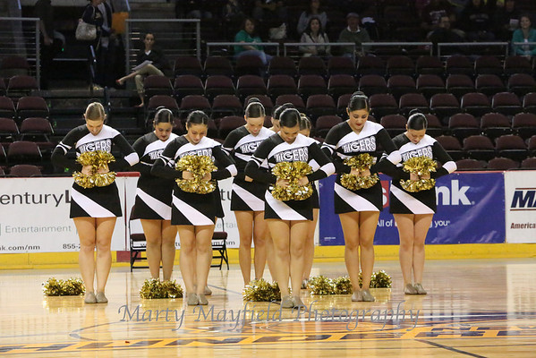 RHS at the 2013 State Spirit Competition