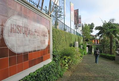 10/ Jardim Tropical Monte Palace