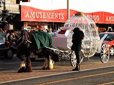 Cinderella's Carriage!