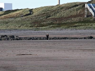 Seascale Jogger