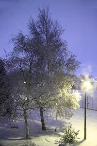 November Snow!