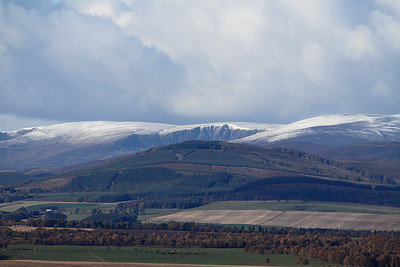 The Braes Of Angus In Closeup 3