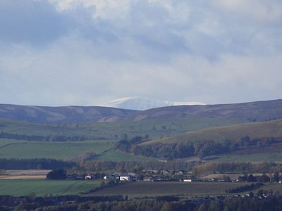 The Braes Of Angus In Closeup 5
