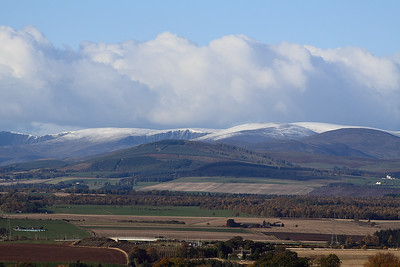The Braes Of Angus In Closeup 2