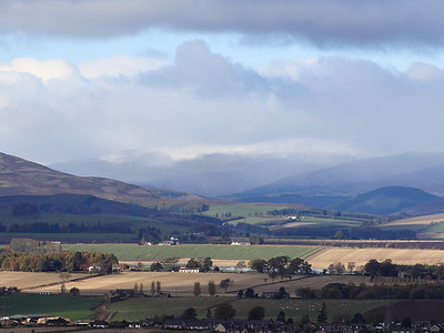 The Braes Of Angus In Closeup 8