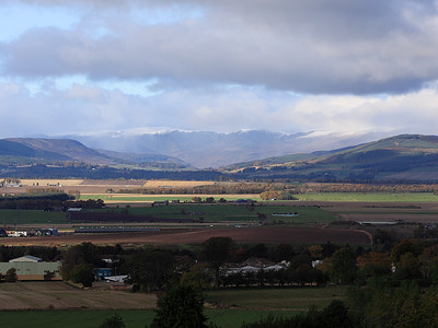 The Braes Of Angus In Closeup 9