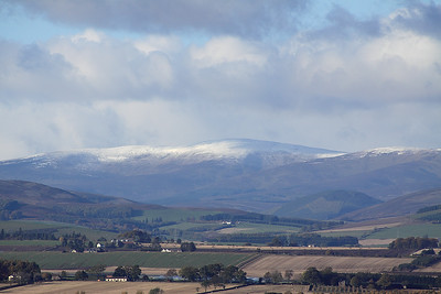 The Braes Of Angus In Closeup 1