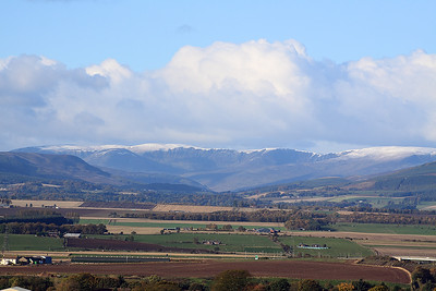 The Braes Of Angus In Closeup 4