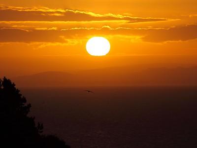 Lothian Sunrise
