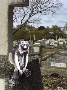 This image was created by using the Safari Central App.  The app is all about critically endangered animals and trying to create global awareness of their plight.  Download the free app and choose one of six animals in Augmented Reality to appear in your photo.  This is a lemur and I chose this cemetery setting to highlight how anything critically endangered already has one foot in the grave so to speak.   More of the images I created are on my instagram page @iamharmoniphotography.   And in the Safari Central photo competition, I won best Brown Bear photo. Your comments are welcome.