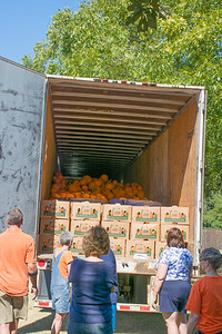 Pumpkin Patch Unloading 2014 (9 of 245)