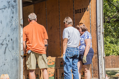 Pumpkin Patch Unloading 2014 (17 of 245)