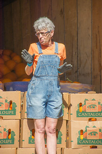 Pumpkin Patch Unloading 2014 (12 of 245)