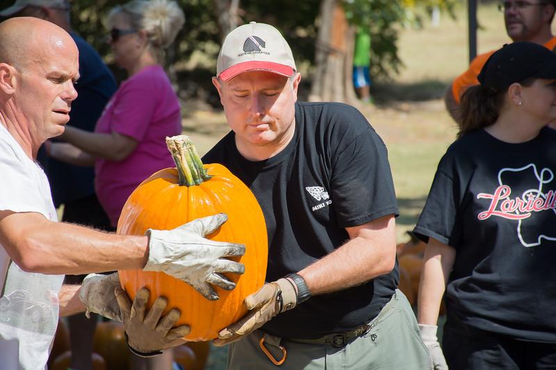Pumpkin Patch Unloading 2014 (125 of 245)