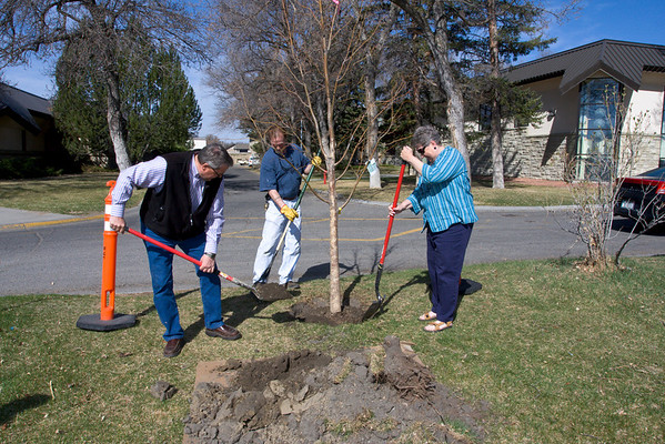 Terry Steiner and his sister Peggy Salsbury plant a linden tree in memory of their parents, Joseph and Marie Steiner.