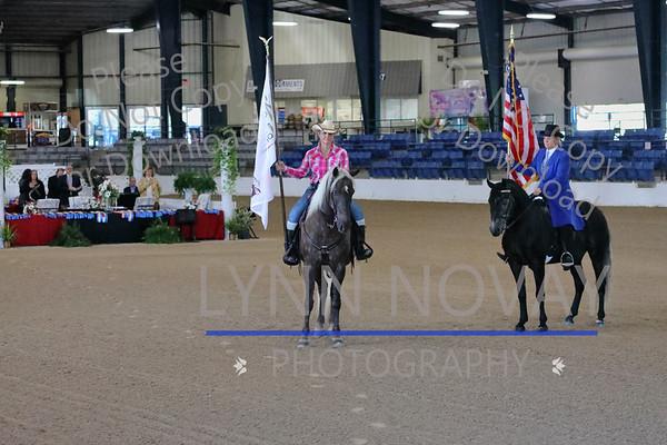 RMHA ~ Rocky Mountain Horse Association