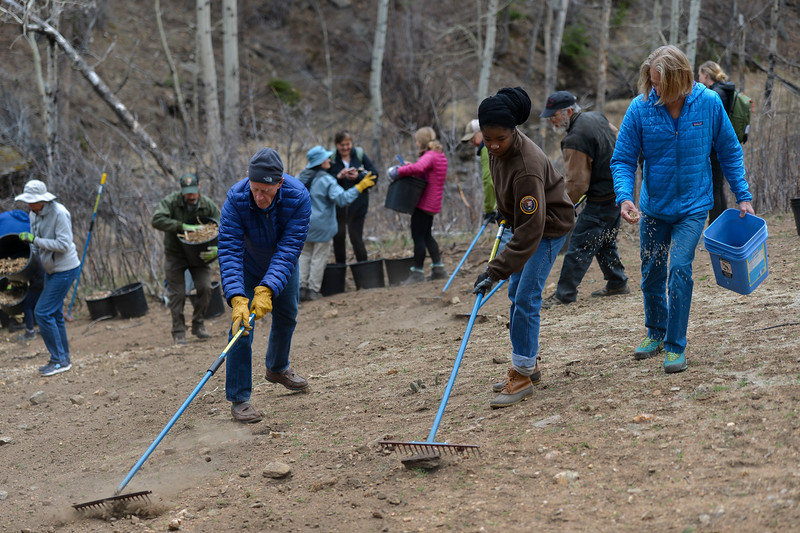 Before Joe Neguse hosted a Community Service Town Hall on April 20, some of his constituents volunteered in Rocky Mountain National Park to restore a patch of land near the Beaver Meadows Visitor Center.