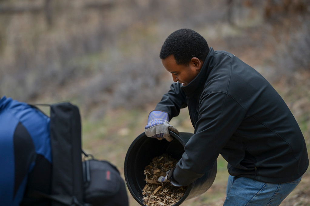 . Colorado Congressman Joe Neguse gets his hands dirty and empties a bucket of mulch on April 20.