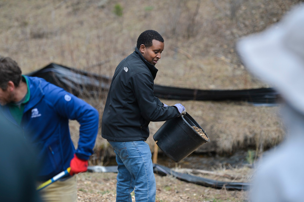 . Colorado Congressman Joe Neguse prepares to dump out a bucket of mulch in Rocky Mountain National Park as part of a land restoration effort for Earth Day.
