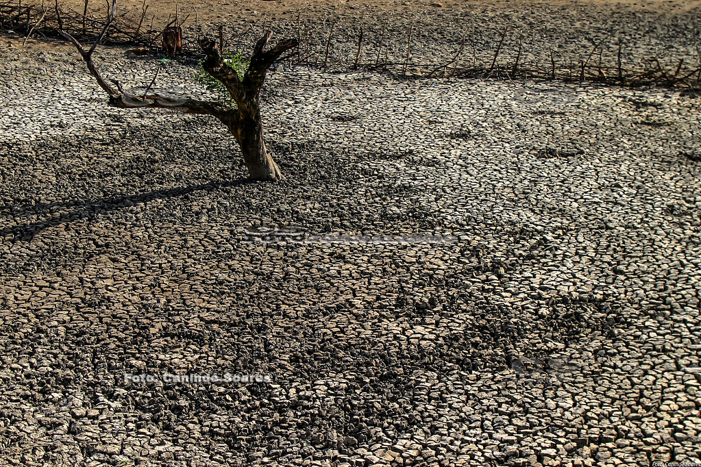 Paisagem de seca
