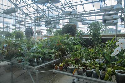 UNBC's greenhouse.