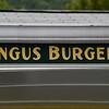 No Soy Burgers. ..No McDonalds...