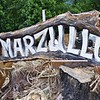 MARZULLO in Maggie Valley...
