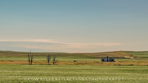 Haley, North Dakota