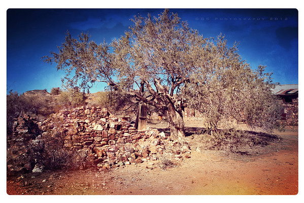 HENRY WICKENBURG'S HOME...or what's left of it....and the HANGING TREE.