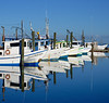 Fulton Harbor - shrimp and oyster boats lined up