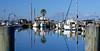 Fulton Harbor - looking north