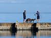 Fulton Harbor - casting for bait along the breakwater