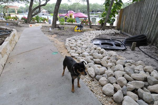 Lulu and water feature