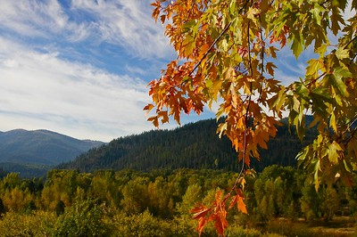 Autumn near Cataldo, Idaho