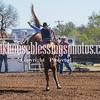 SaddleBronc 3 19 17-23
