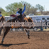 SaddleBronc 3 19 17-36